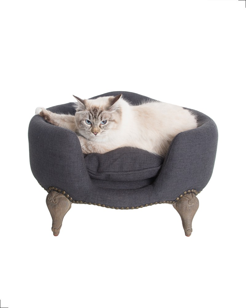 Canapé design pour chat de la collection Lord Lou