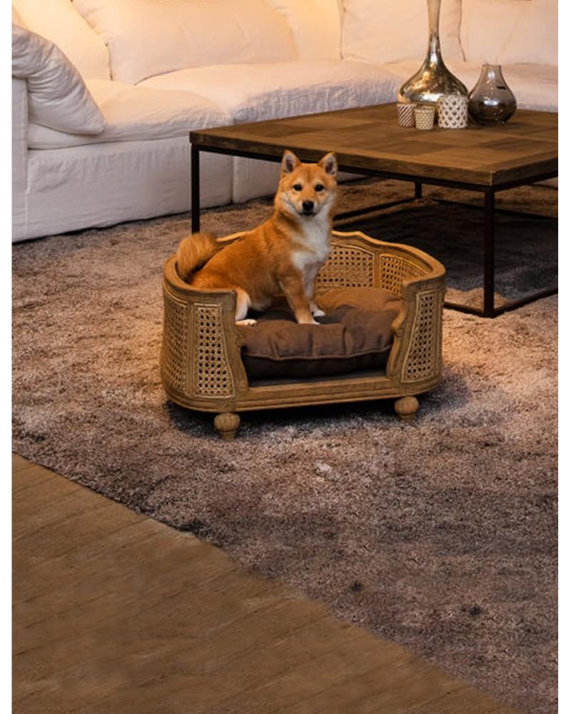 Collection Lord Lou, canapé de luxe pour chien
